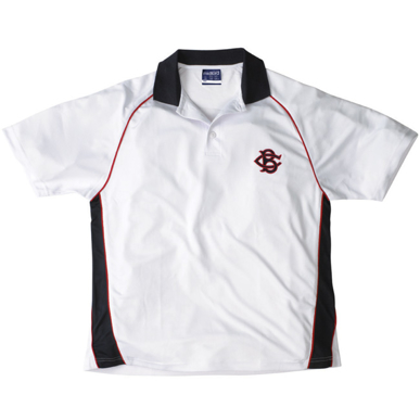 Picture of Raglan Sleeve polo